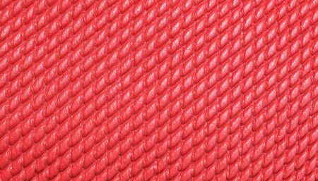 snakeskin: Fashion skin. Leather texture background. Close-up photo