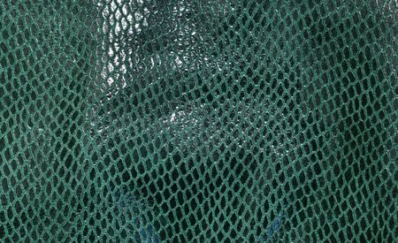 dark green: Green Leather. Concept and Idea of Fine Leather Crafting.  Dark green leather laser treatments.