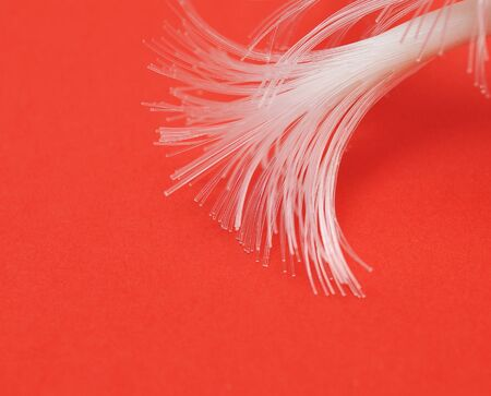 Optical Fibers cable on a red background. Macro with extremely shallow dof. Stock Photo