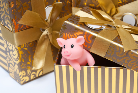The pig is a symbol of the year 2019 in the Chinese calendar. Piglet in a festive box. Festive background.