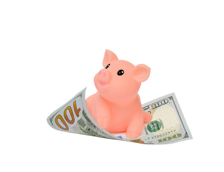 Symbol of the 2019 year pink pig flying on a hundred dollar bill. Financial with development and commit business concept. Victory and success from patience- Image.