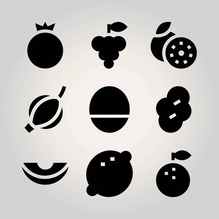 Fruits vector icon set. Gooseberry, pomegranate, prune and melon.