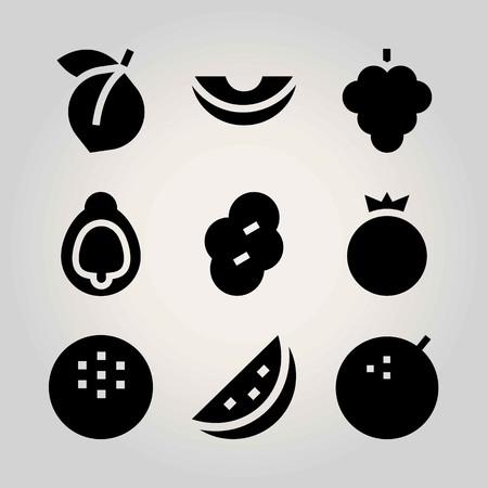 Fruits vector icon set. prune, apricot, raspberry and melon
