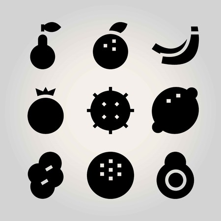Fruits vector icon set. pomegranate, coconut, banana and lychee