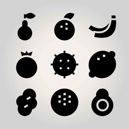 Fruits vector icon set. pomegranate, coconut, banana and lychee