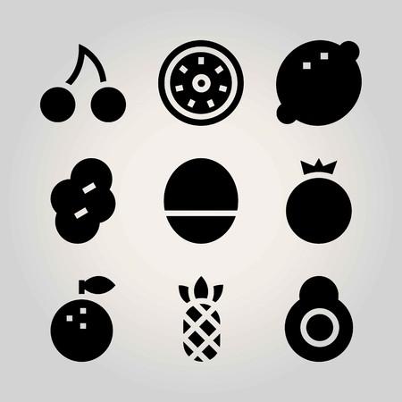 Fruits vector icon set. pomegranate, avocado, cherry and lemon Ilustração