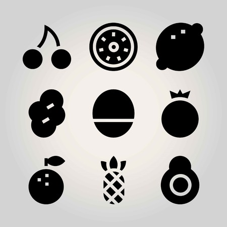Fruits vector icon set. pomegranate, avocado, cherry and lemon Illustration