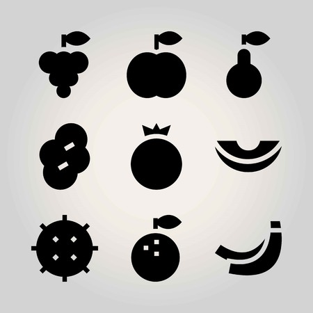 Fruits vector icon set. lychee, orange, pomegranate and melon