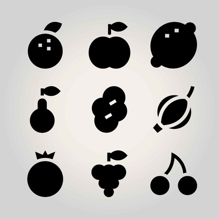 Fruits vector icon set. tangerine, prune, pomegranate and grape
