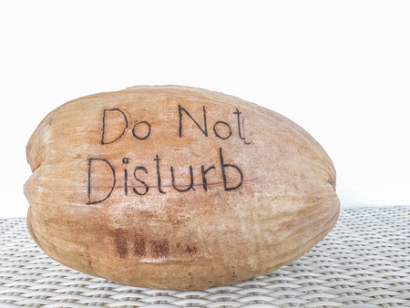 do not disturb: Do Not Disturb message on Coconut shell Stock Photo