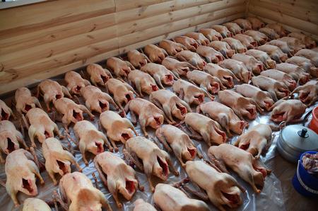 Goose carcass