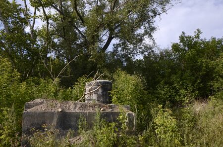 Old water well in the forest.