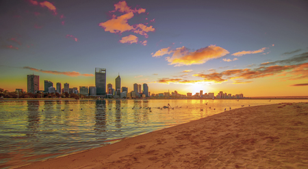 cisnes: Australia Occidental - Golden Sunrise Vista de Perth Horizonte de Swan River