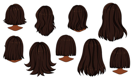Belle coiffure de cheveux de femme. Vue arrière.