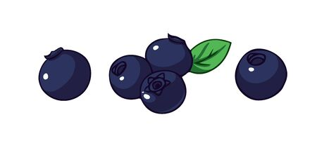Blueberries set. Cartoon vector icons isolated on white background.