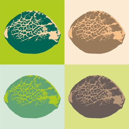 大麻の種子。ベクトルの図。