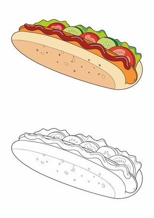 Homemade hot dog. Appetizing hotdog isolated on white background. King size hotdog. Vector illustration. Standard-Bild - 122251228