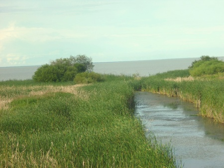 lake winnipeg: Creek flowing through marshland entering Lake Winnipeg