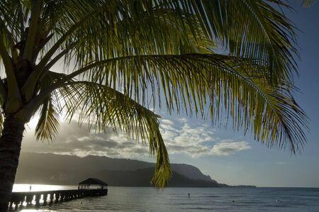 Hanalei Pier, palm tree against the sun at the beach and mountains. Kauai, Hawaii Islands.