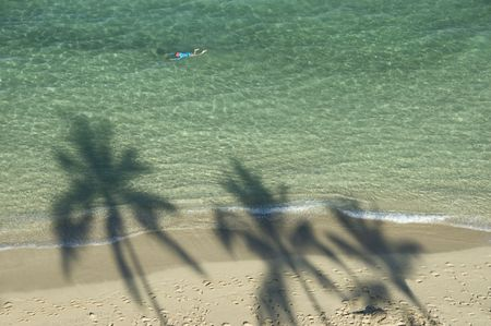 shadow: Three palm trees shadow at the sandy beach and one swimmer enjoying the clear water.