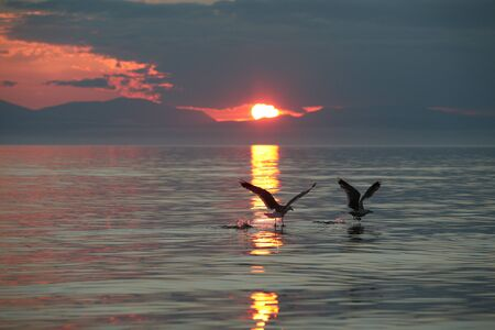 Lake Baikal, breakfast tea at dawn, photo