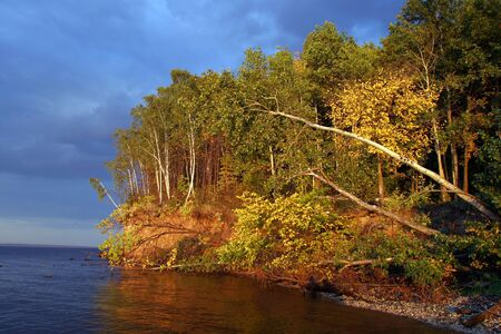 Beautiful autumn forest on the banks of the great river photo