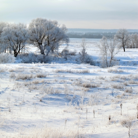 lopen op de koudste winterdag na een sneeuwval