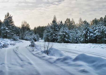 Walk through the beautiful places frosty Russian winter Standard-Bild