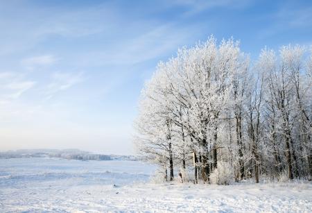 Spazieren Sie durch die schöne Winterlandschaft in Russland Lizenzfreie Bilder