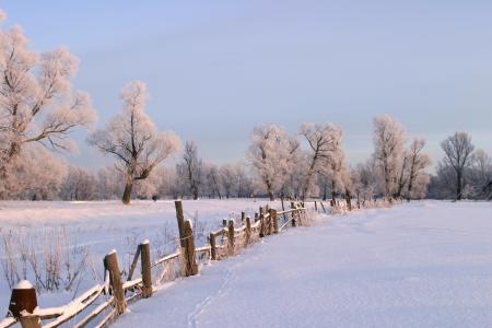 ein langer Spaziergang in der Natur verschneiten russischen Winter