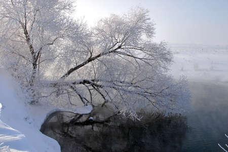 sleet: Winter walk along the river on a misty morning