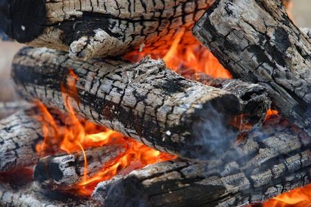 transformed: madera se quema muy bien y se transforma en carb�n