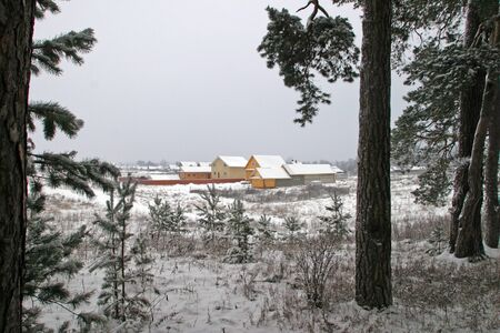 landscape house in the winter coniferous forest photo