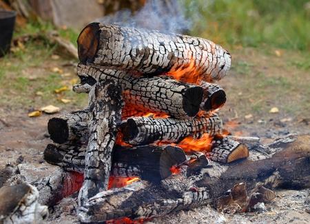 transformed: madera se quema muy bien y se transforma en carb?