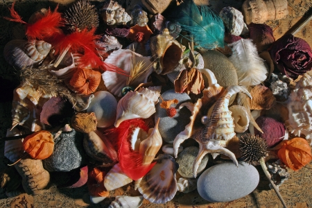 stilus: still life with stones and shells Stock Photo