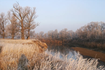 beginning of winter landscape on the river near the shore groves and trees covered with frost at sunset photo