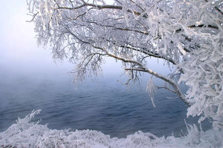 winter landscape trees near-freezing river covered with frost clear day photo