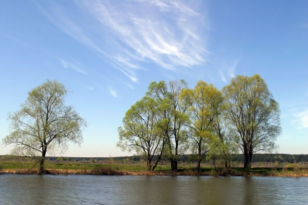 spring landscape marvelous morning on the river and trees in the green haze of the first leaf
