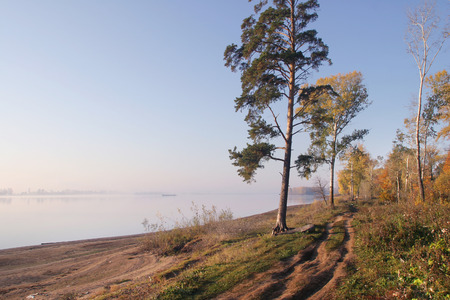 autumn landscape dirt road along the river bank near the forest photo