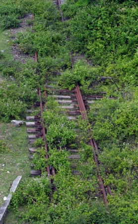 obsolescence: close-up of the old overgrown green grass disused railway track