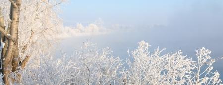 vapore acqueo: alberi paesaggio invernale e arbusti in gelo nel ghiaccio del fiume e vapore acqueo sopra