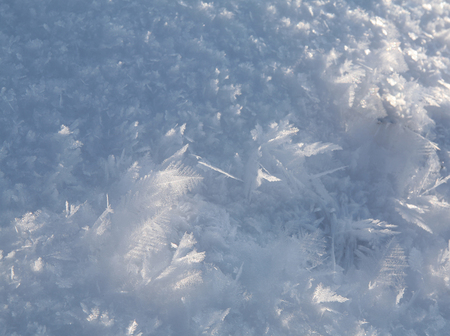hoary: macro texture of frost and snow in bright sunlight