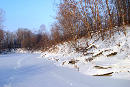 winter landscape icy river leafless trees on the shore in\ sunny cold day