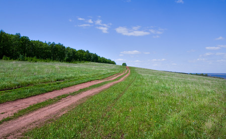 spring landscape of rural dirt road leading to the horizon through a meadow near the forest on a sunny day photo