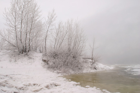 Winter landscape of dense fog on the river ice and trees covered with frost on the shore photo