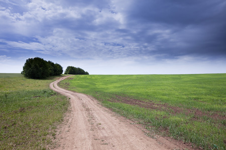 spring landscape dirt road of endless fields and beautiful clouds in the blue sky Stock Photo - 27726439