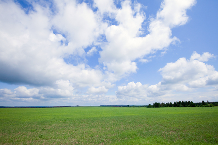 boundless: summer landscape beautiful clouds in the blue sky over the boundless field on a sunny day
