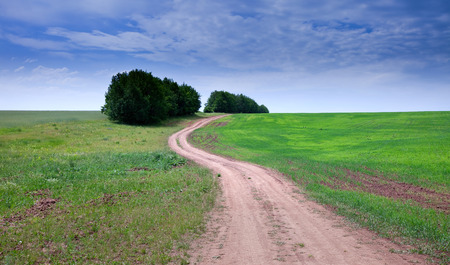 spring landscape dirt road of endless fields and beautiful clouds in the blue sky Stock Photo - 28022876