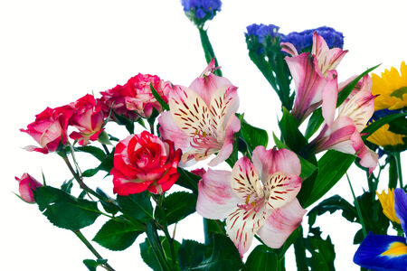 macro beautiful colorful bouquet of flowers on white background studio photo