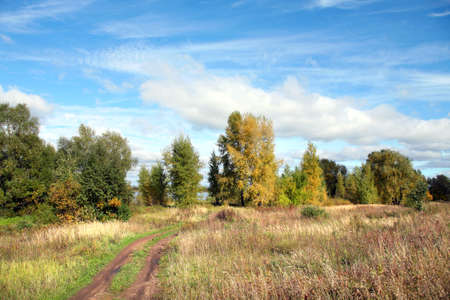 picturesque landscape of a dirt road in the meadows near the woods during the Indian summer photo